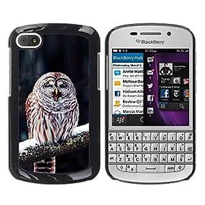 TopCaseStore / la caja del caucho duro de la cubierta de protección de la piel - Cute Funny Winter Sleepy Owl - BlackBerry Q10