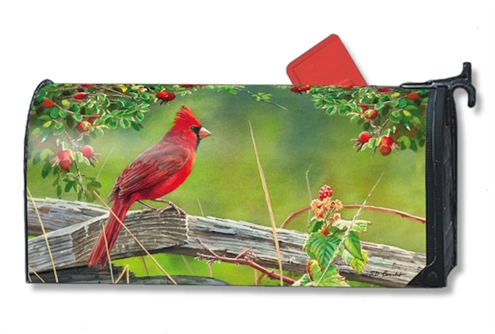 Cardinal Lookout Large MailWraps Magnetic Mailbox Cover #21293