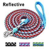 colorful dog leash - Mycicy Mountain Climbing Rope Dog Leash - 6 foot Reflective Nylon Braided Heavy Duty Dog Training Leash for Large and Medium Dogs Walking Lead (red)