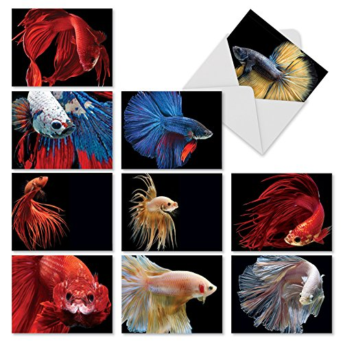 10 Assorted 'Fancy Fins' Thank You Cards with Envelopes 4 x 5.12 inch Colorful Betta Fish Appreciation Greeting Cards, Boxed Stationery Set for Baby Showers, Birthdays, Thanksgiving M1630TY