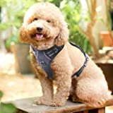 Rabbitgoo Adjustable Refletive Dog Harness No-Pull Outdoor Pet Vest with Handle Easy Control for Small Dogs & Durable Material Black