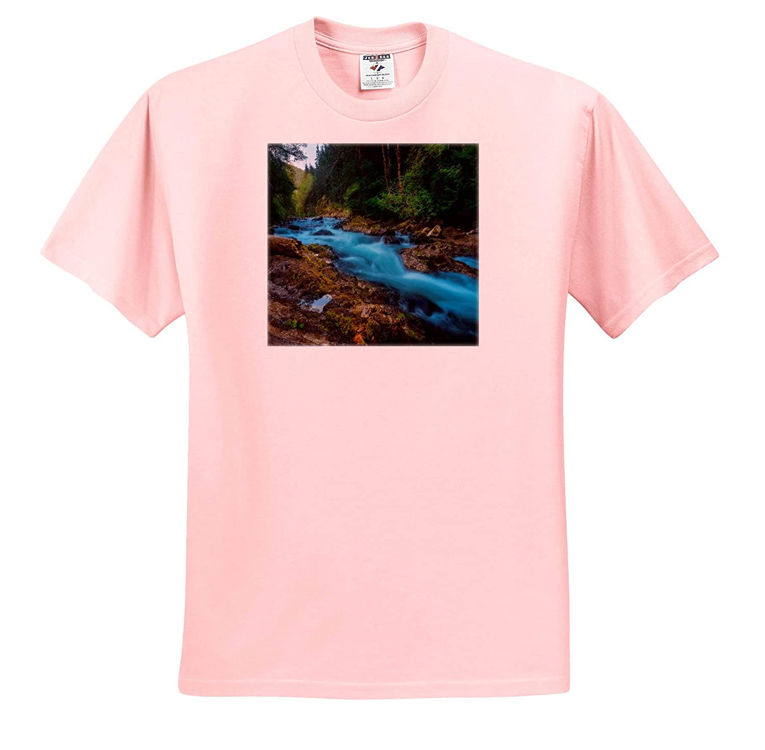ts/_309070 3dRose Mike Swindle Photography Adult T-Shirt XL Landscapes River Flowing Through Green Forest