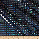 Amazon.com: Ben Textiles - Tela de punto de holograma ...