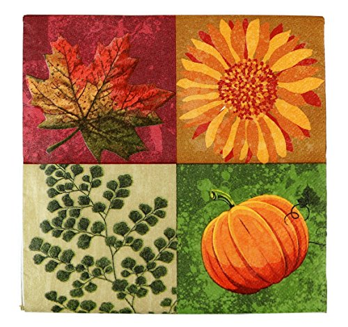 Paper Party Luncheon Napkins - Party House 72 Luncheon Paper Napkins, 2 Ply, 13 x 13 Inch, Fall Design
