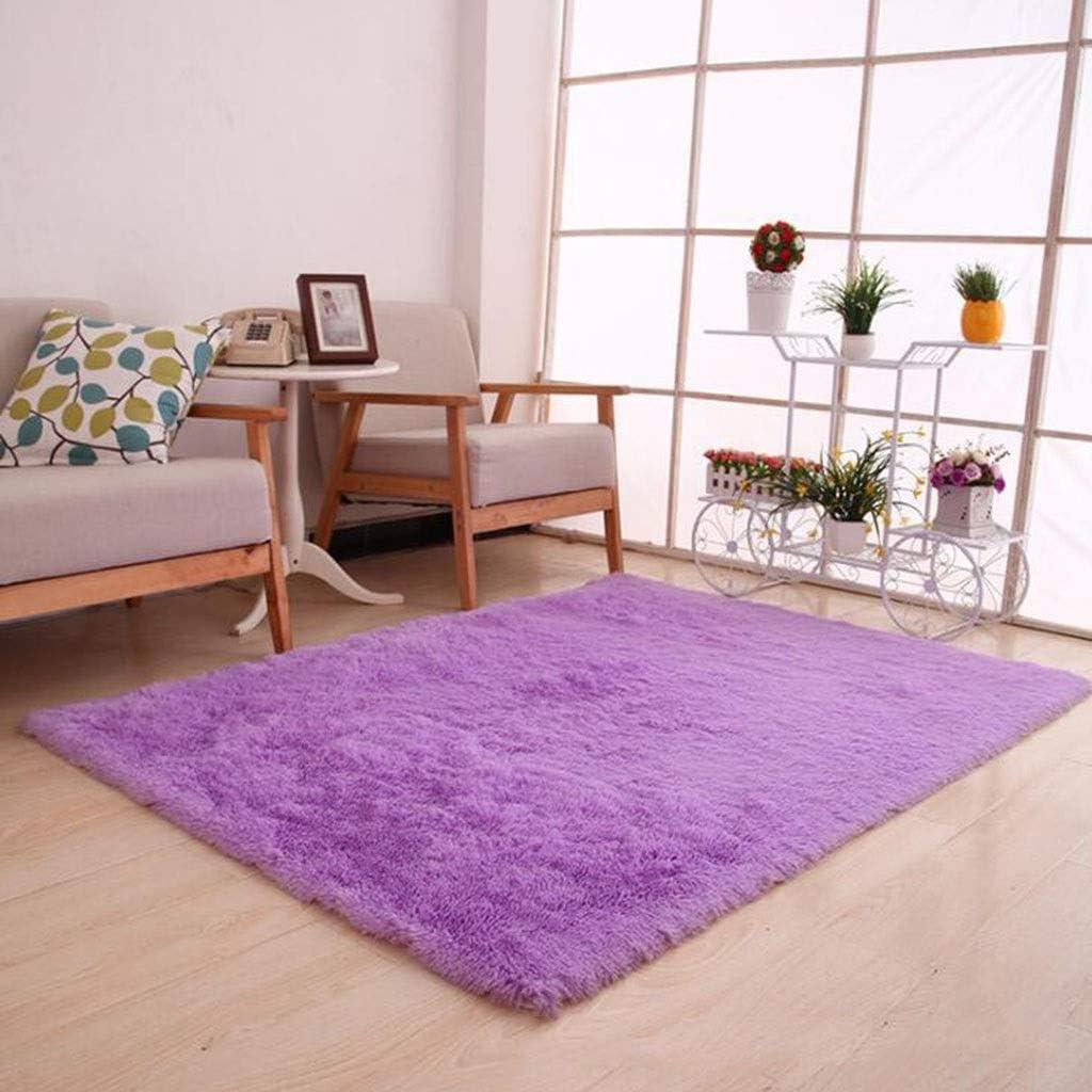 CarPet Household Foyer Bedroom Living Room Bedside Silk Door Mat Mat Color : Pink, Size : 100160cm