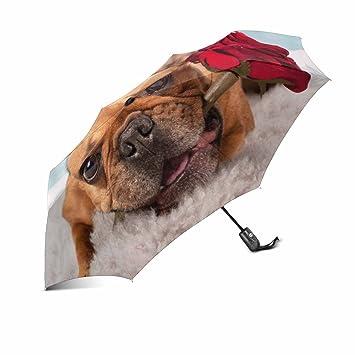 InterestPrint - Paraguas de Viaje Compacto para Hombre y Mujer, diseño de Bulldog francés,
