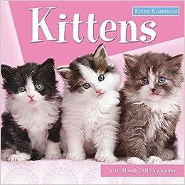 keith kimberlin kittens 2018 wall calendar