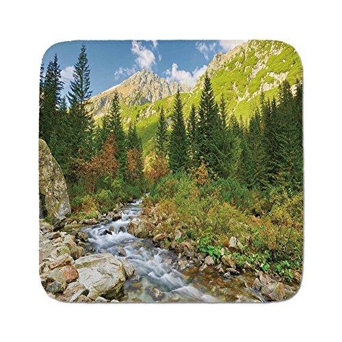 Cozy Seat Protector Pads Cushion Area Rug,Outdoor,Roztoka Stream Tatra National Park Carpathian Mountains Poland Woods,Green Light Green Tan,Easy to Use on Any (Tatra Sink)