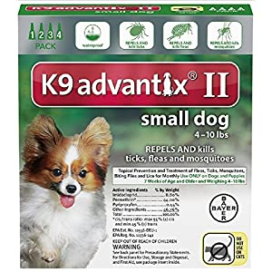 Ax Advantixii Dog 4mon 4-10lb Grn 84