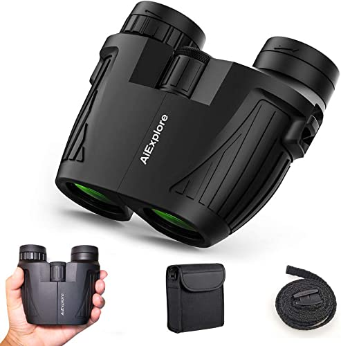 12×25 Compact Binoculars for Adults and Kids, Folding Waterproof Mini Lightweight Binoculars Easy Focus with BAK4 Low Light Technology for Hunting, Bird Watching, Hiking, Concert, 2019 New