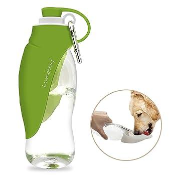 Amazon.com: LumoLeaf - Botella de agua portátil para ...