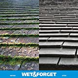 Wet & Forget Roof and Siding Cleaner for Easy