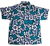 Boys Hibiscus Button Down Hawaiian Shirt (6, Green)