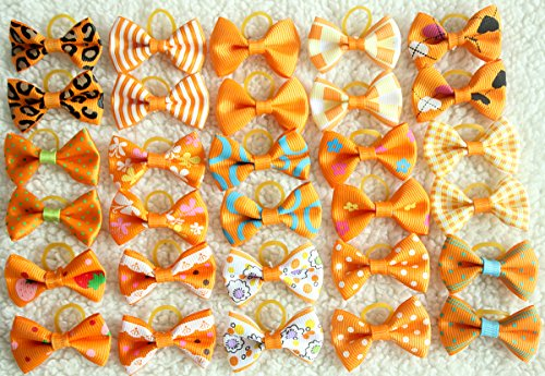 yagopet 40pcs/20pairs Small Dog Hair Bows Autumn Dog Bows Orange Dog Hair Bows Topknot Mix Designs Small Bowknot with Rubber Bands Pet Grooming Products Dog Hair Accessories by yagopet