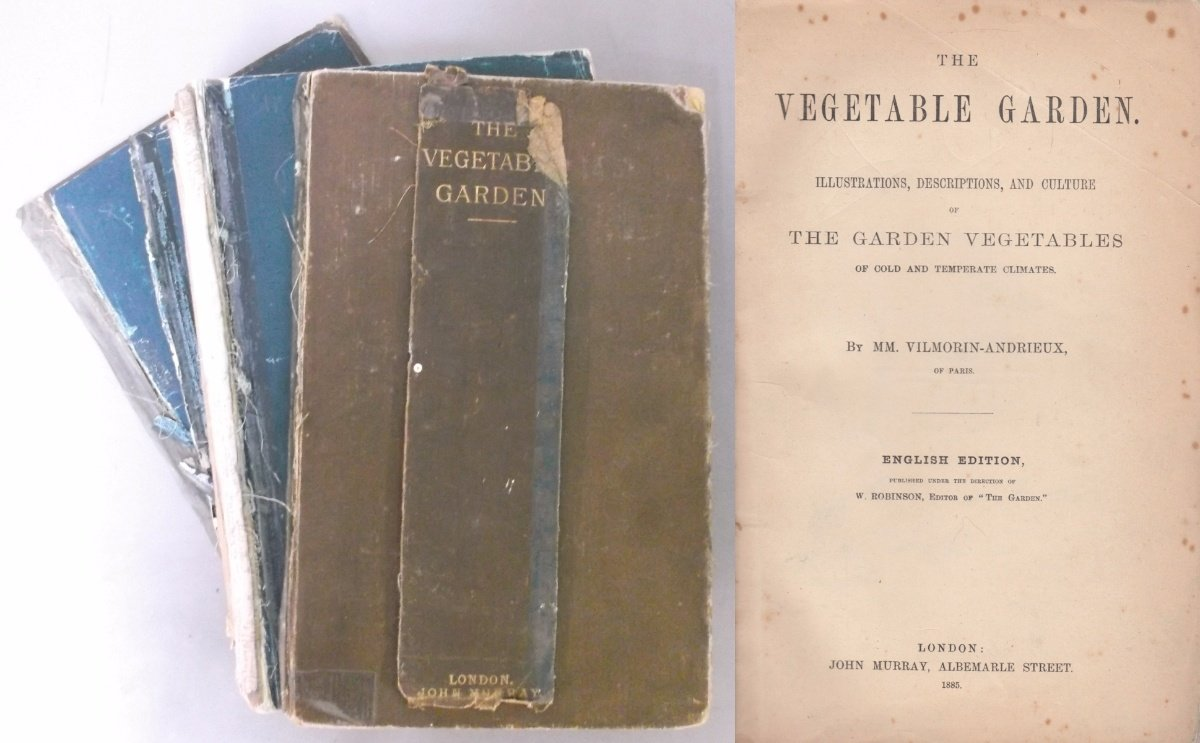 The Vegetable Garden: Illustrations, Decriptions, and Culture of the Garden Vegetables of Cold and Temperate Climates