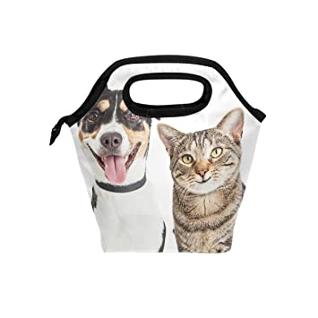JSTEL - Bolsa de almuerzo para gatos y perros, bolsa para el almuerzo, contenedor