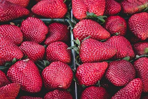 Erdbeeren im Körbchen ca. 60 x 42 cm Poster hochwertiges Fotopapier