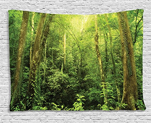 Forest Tapestry Green Decor by Ambesonne, Tropical Rainforest Landscape in Malaysia Asia Tree Trunks Uncultivated Wood Zen Style Print, Wall Hanging for Bedroom Living Room Dorm, 80 W X 60 L, Green