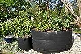 ECOgardener Raised Bed Fabric Planter Grow Bags