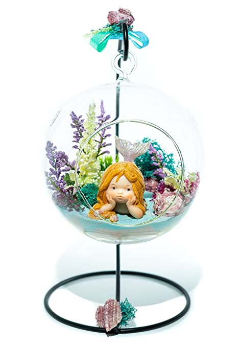 Amazon Com Terrarium Kit Little Mermaid Mermaid Series