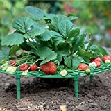 5 Pack Garden Handy Strawberry Supports Easy to Use Strawberry Plant Support Keep Strawberries Off Rot in The Rainy Days