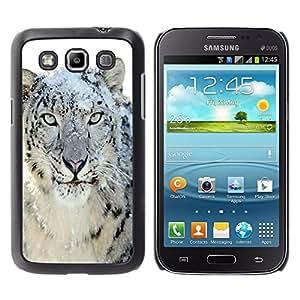 Qstar Arte & diseño plástico duro Fundas Cover Cubre Hard Case Cover para Samsung Galaxy Win / I8550 / I8552 / Grand Quattro ( Snow Leopard Tiger Furry Winter Animal)