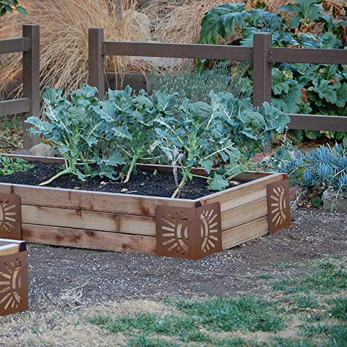 - Bloom 11021BL Sun Instabrace Flower Garden Bed Corners, 9.5 Brown