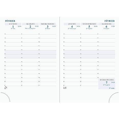 Amazon.com : Exacompta 15840 Diary Insert : Office Products