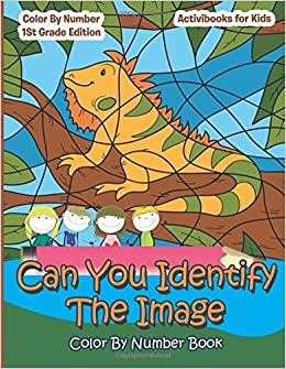 Book Can You Identify The Image Color By Number Book: Color By Number 1St Grade Edition by Activibooks for Kids (2016-02-07)