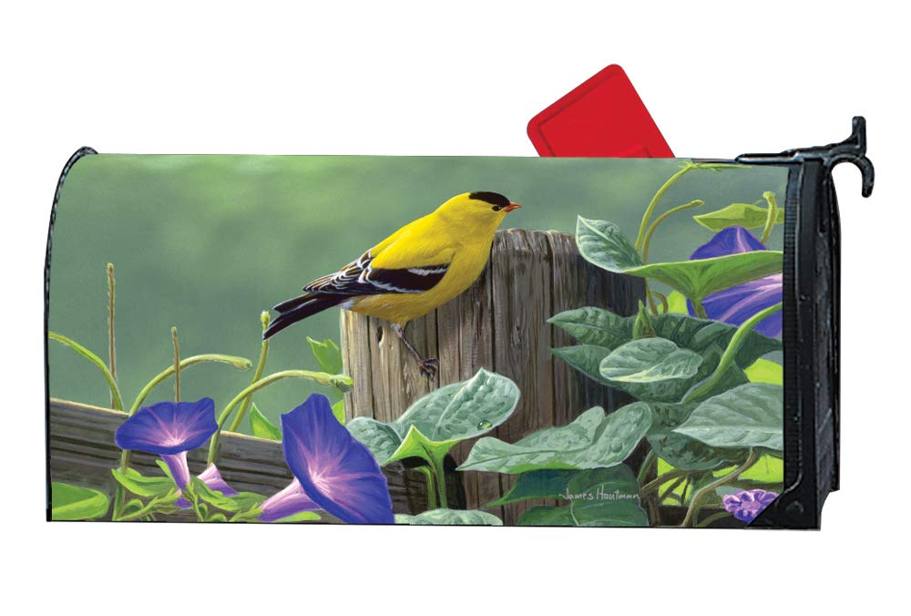 MailWraps Studio M Goldfinch Perch Decorative Spring Summer Birds Oversized, The Original Magnetic Mailbox Cover, Made in USA, Superior Weather Durability, Large Size fits 8W x 21L Inch Mailbox