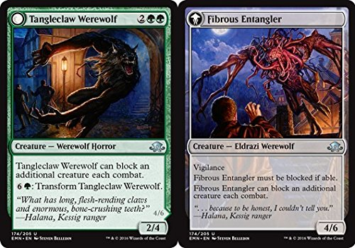 Magic: the Gathering - Tangleclaw Werewolf // Fibrous Entangler - Eldritch Moon