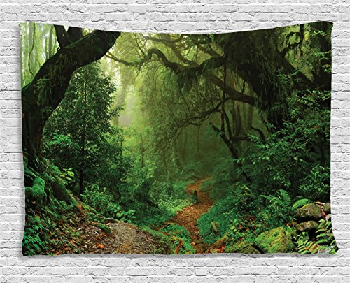 - Ambesonne Rainforest Tapestry, Forest in Nepal Touristic Trekking Branches Misty Road Fresh Air Outdoors Theme, Wall Hanging for Bedroom Living Room Dorm, 80 W X 60 L Inches, Green Brown