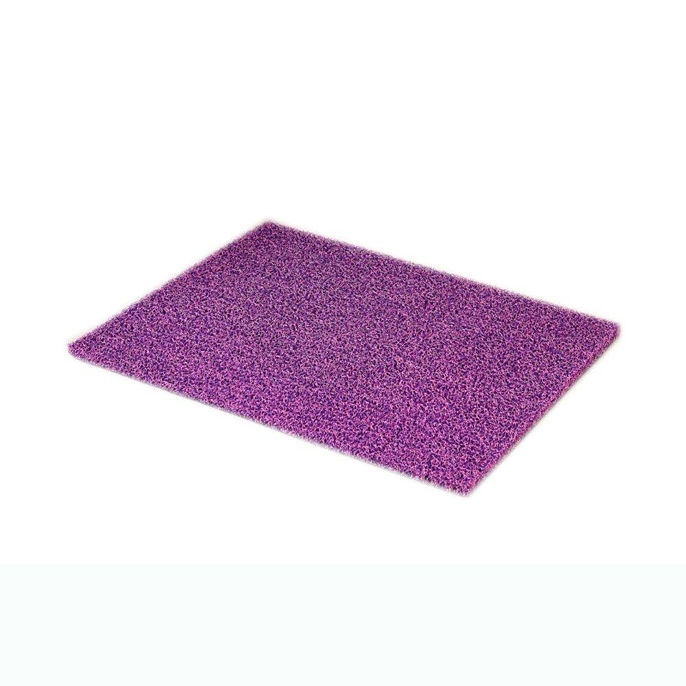 Silk circle plastic dust carpet door into the living room home bathroom bathroom entrance frictional rubbing blanket ( Color : 3 , Size : 120150cm )