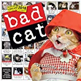 Bad Cat Wall Calendar 2018