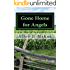 Gone Home for Angels: A Novel of the American Civil War (The Siler Saga Book 2)