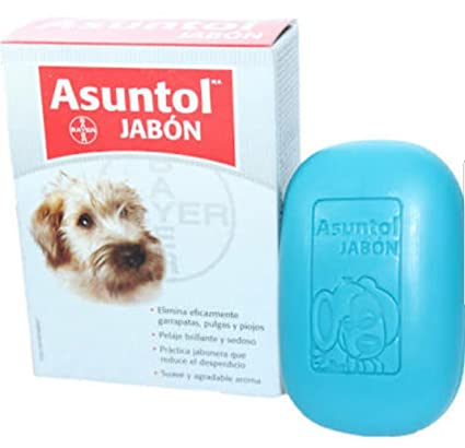 Juegos De Bañar Perros | Perros Jabones Asuntol 100 Gr Amazon Com Mx Mascotas