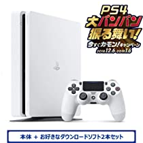 PlayStation 4<br>ダウンロードソフト2本セット
