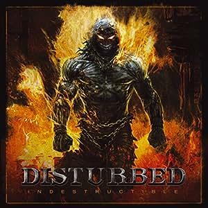 Indestructible (2 LP w/Bonus CD) [Vinyl]