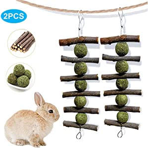 PeSandy Bunny Chew Toys for Teeth, Organic Apple Wood Molar Sticks with Timothy Hay Circles for Bunny Chinchilla Guinea Pig Hamsters Holland Lop Prairie Dogs Squirrels, Improves Dental Health