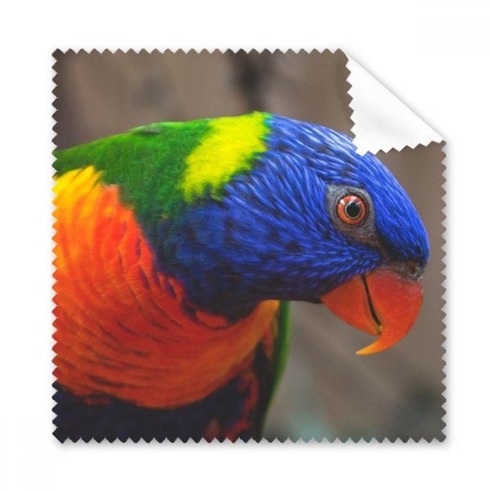 Pcture Terrestrial Organism動物Parrot Glasses布クリーニングクロス電話画面クリーナー5点ギフト   B0761TKLGW
