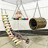 squirrel hamster sugar glider hammock 3 piece set hanging nest swing birds chew toy for mice small pet animal bed rattan parrot hedgehog considerate design cage house bridge toys chinchilla warm ladde