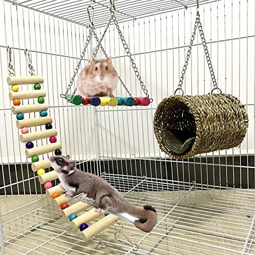 Squirrel Hamster - Hamaca de azúcar para mascotas (juego de 3 piezas, juguete para colgar rodar y pájaros balanceados, para...