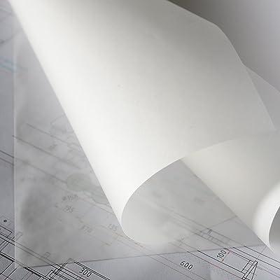 Canson 200012125 - Rollo, papel vegetal satén, 0.375 x 20 m: Oficina y papelería