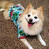 LAMONDE Dog Hawaiian Shirt, Summer Dog Apparel Clothes, Puppy Cats Camp Luau Outfits Costume