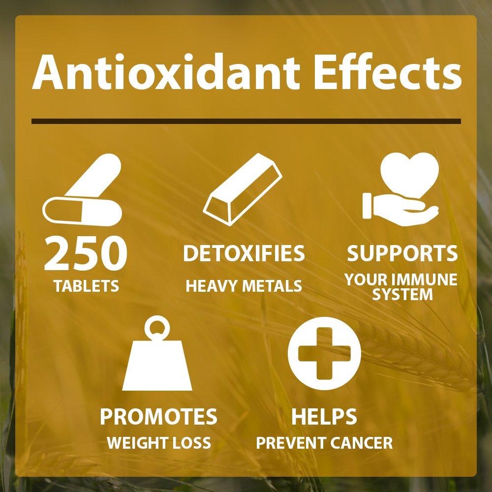 Amazon.com: GREEN SUPERFOOD Organic Detox Mix Chlorella Spirulina ...