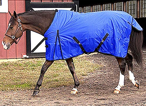 Intrepid International Free Runner Mid Weight Turnout Blanket, 74-Inch, Royal Blue ()