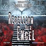 Rebellion der Engel   Brigitte Melzer