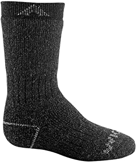 product image for Wigwam Youth 40 Below II F2035 Sock