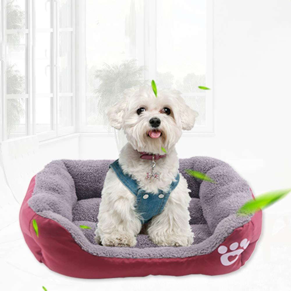 CARDMOE Cama Lavable para Perro, sofá Cama para Mascotas, Cama para Gato, Cama ortopédica de Espuma viscoelástica Resistente al Agua para Mascotas: ...