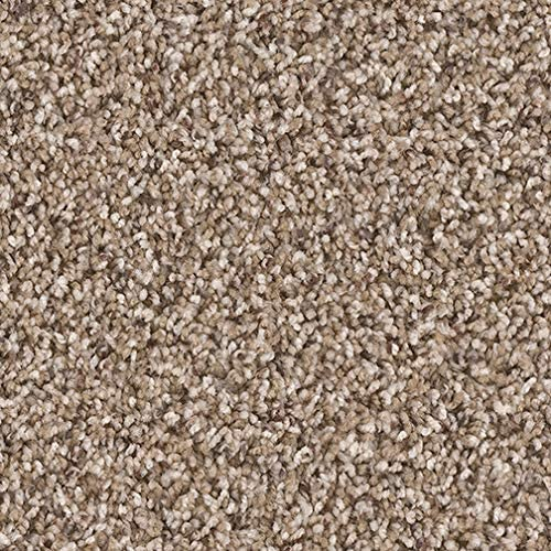 Dream Weaver 12 x14 Indoor Area Rug -Briarwood 32oz – plush textured carpet for residential or commercial use with Premium BOUND Polyester Edges.